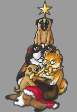 card-dogpile